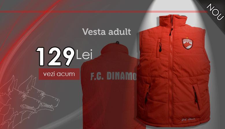 Vesta adula FC Dinamo